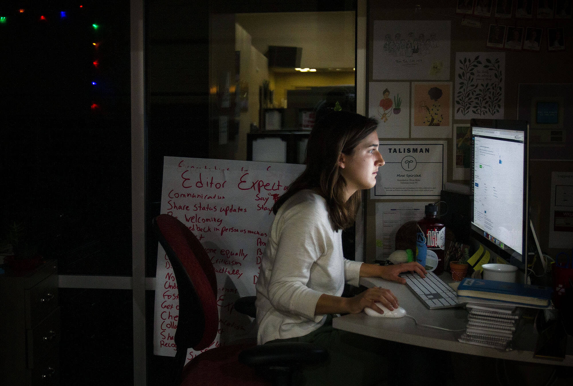 Girl Editing at Computer Compressed Image